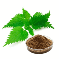 Nettle Root Extract (Urtica dioica) (In combination with Betasitosteral)